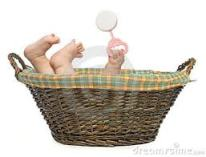 lori handeland - baby basket