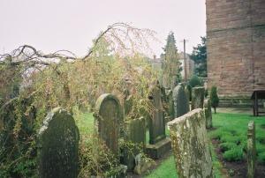amanda stevens -old cemetery