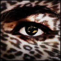 cecilia robert - panther eye