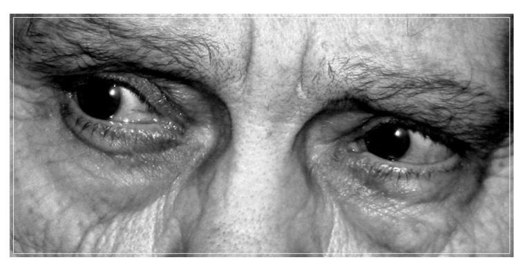 olocausto - occhi