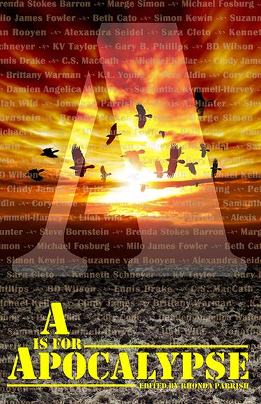 rhonda parrish - apocalypse