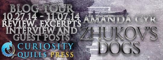 amanda cyr - blog tour