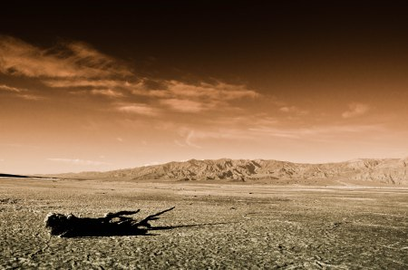 Travel and photography in the Western areas of the United States.